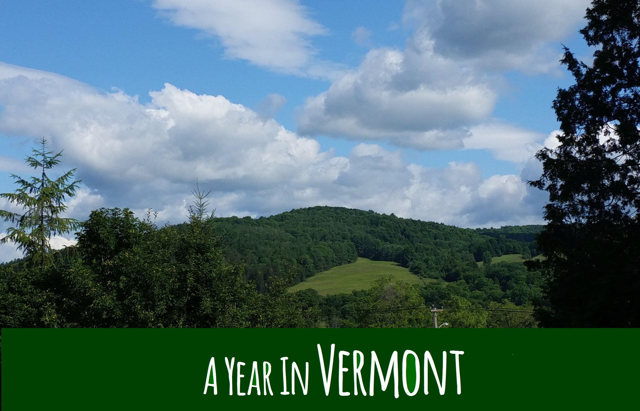 A Year in Vermont